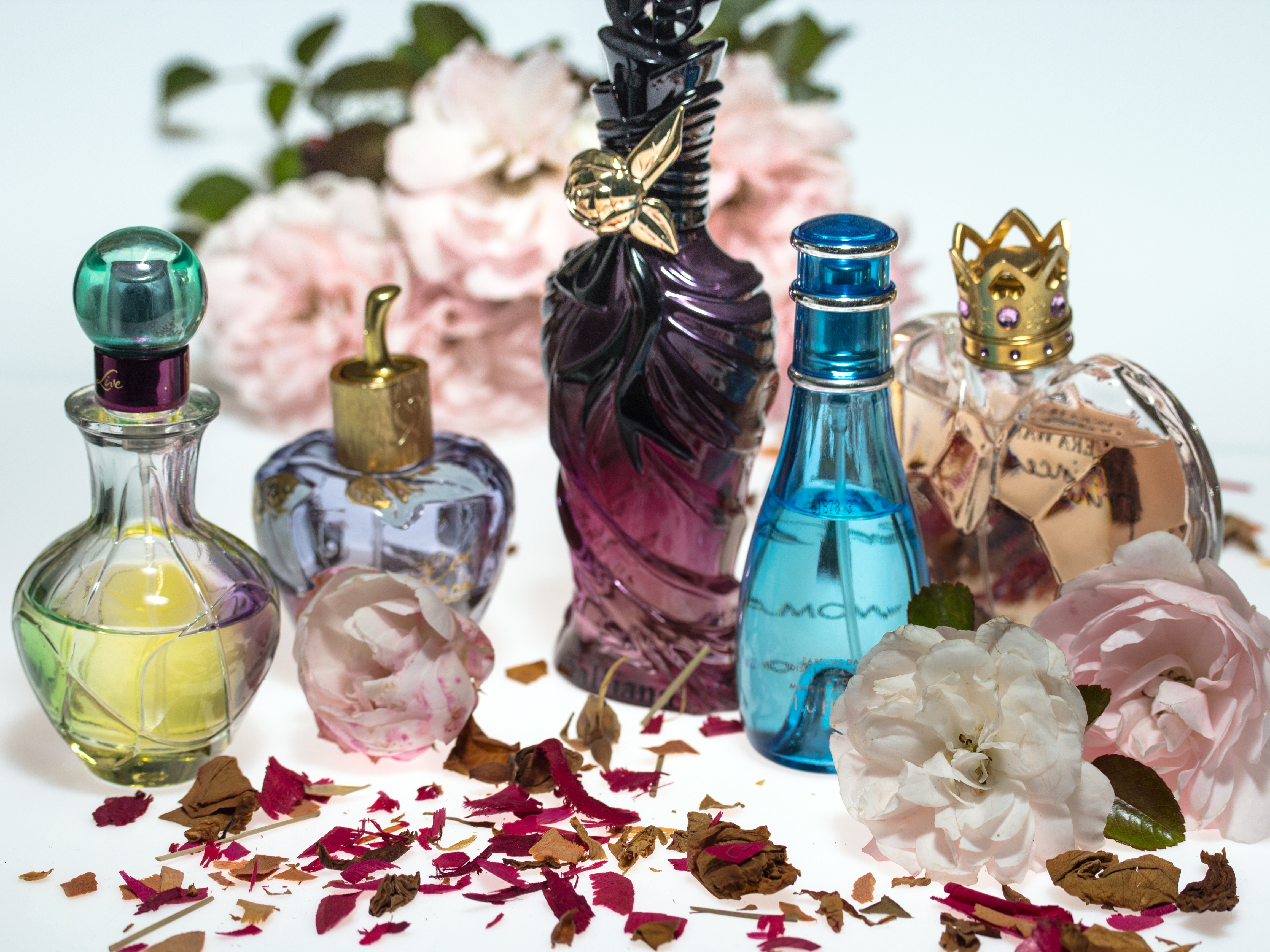 perfumes aventuracosmetica