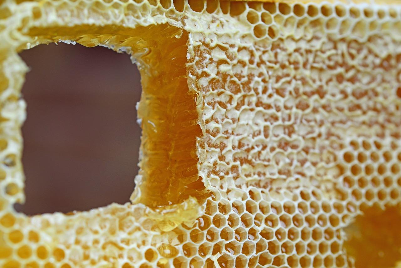 Cera, De abejas